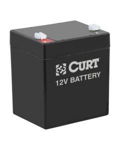 Curt Breakaway Battery
